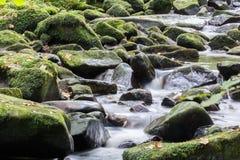 Река горы Стоковое Изображение