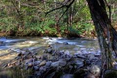 река горы Стоковое фото RF