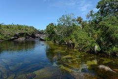 Река горы Canio Cristales Колумбия Стоковые Изображения RF