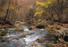 река горы gorge Стоковая Фотография