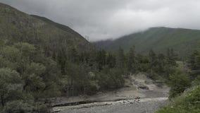 Река гор в природе Georgia кавказца с деревьями и облаками видеоматериал