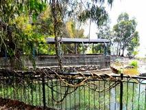 Река Джордан Израиля Стоковые Изображения RF