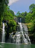 река джунглей Стоковая Фотография RF