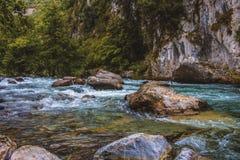 Река для организованной преступности стоковые фотографии rf