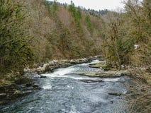 Река ду с мшистыми деревьями приближает к водопаду du ду saut Стоковое Изображение RF