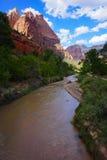 Река девственницы национального парка Сиона Стоковая Фотография RF