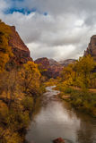 Река девственницы пропуская через национальный парк Сиона Стоковое Фото