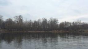 Река & деревья Стоковые Фотографии RF