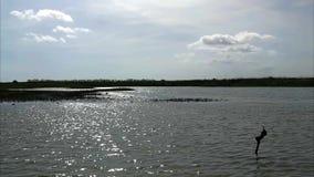Река естественный курс воды видеоматериал