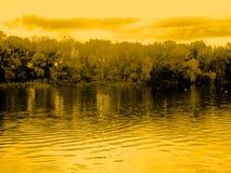 Река лета природы и строка деревьев на береге осматривают сразу Стоковые Фото