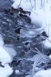 река замораживания стоковые изображения