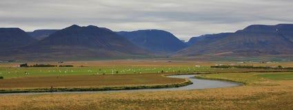 Река, зеленый луг и горы около Saudarkrokur, Исландии Cl Стоковая Фотография