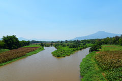 Река земледелия Стоковое фото RF