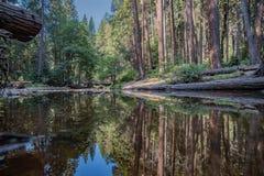 Река зеркала стоковое изображение rf
