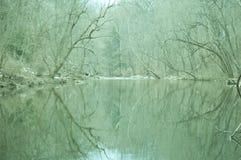 река зимнее Стоковые Изображения