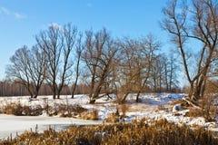 Река зимы побережья Стоковая Фотография