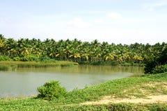 река зоны пропуская тропическое Стоковая Фотография