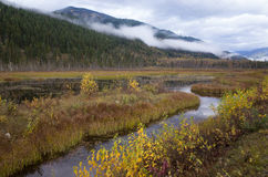 Река извиваясь через долину горы Стоковые Изображения