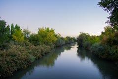 Река Иордан в свете утра стоковое изображение
