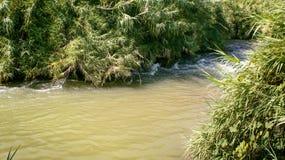 Река Иордан, Израиль стоковое фото rf