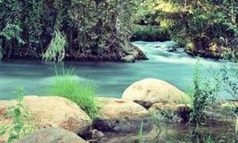 Река Иордан (обрабатываемый год сбора винограда) стоковое фото rf