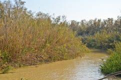 Река Иордан, Святая Земля Стоковое Изображение