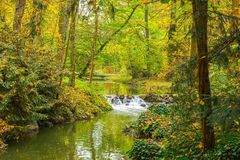 Река и водопад осени с плющом Стоковое Изображение