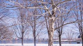 Река и дома в зиме Нью-Джерси стоковая фотография rf