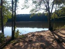 Река и деревья природного парка Стоковое Изображение