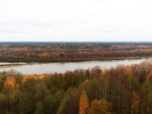 Река и лес Стоковое Изображение