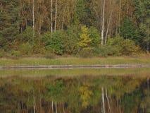 Река и пуща Стоковое фото RF