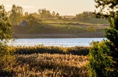 Река и тростники стоковая фотография rf