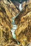 Река Йеллоустоун пересекая каньон Стоковые Фотографии RF