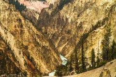 Река Йеллоустоун пересекая каньон Стоковое фото RF