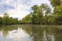 река канала стоковое фото rf