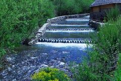 Река каскадируя среди зеленого леса и деревянного дома Стоковая Фотография