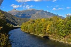 Река которое пропускает через лес riparian стоковое изображение rf