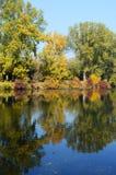 река ландшафта осени прочно Стоковые Изображения