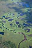 Река леса, взгляд сверху Стоковые Фото