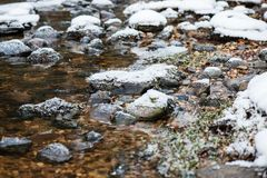 Река леса в зиме Amata в Латвии стоковое фото rf