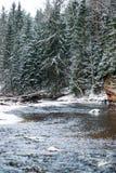 Река леса в зиме Amata в Латвии стоковые фотографии rf