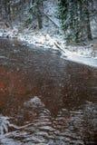 Река леса в зиме Amata в Латвии стоковая фотография