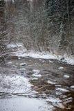 Река леса в зиме Amata в Латвии стоковые изображения rf
