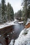 Река леса в зиме Amata в Латвии стоковые фото