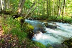 Река леса среди утесов стоковое изображение