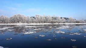 Река, лес и ледяные поля стоковые фотографии rf