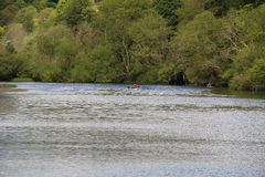 Река Ли в пробочке Ирландии с каноистом Стоковые Фотографии RF