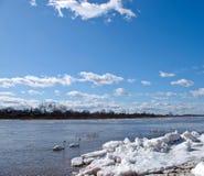 река льда Стоковые Изображения RF
