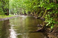 река малое Стоковые Изображения RF
