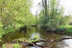 река малое стоковое изображение rf